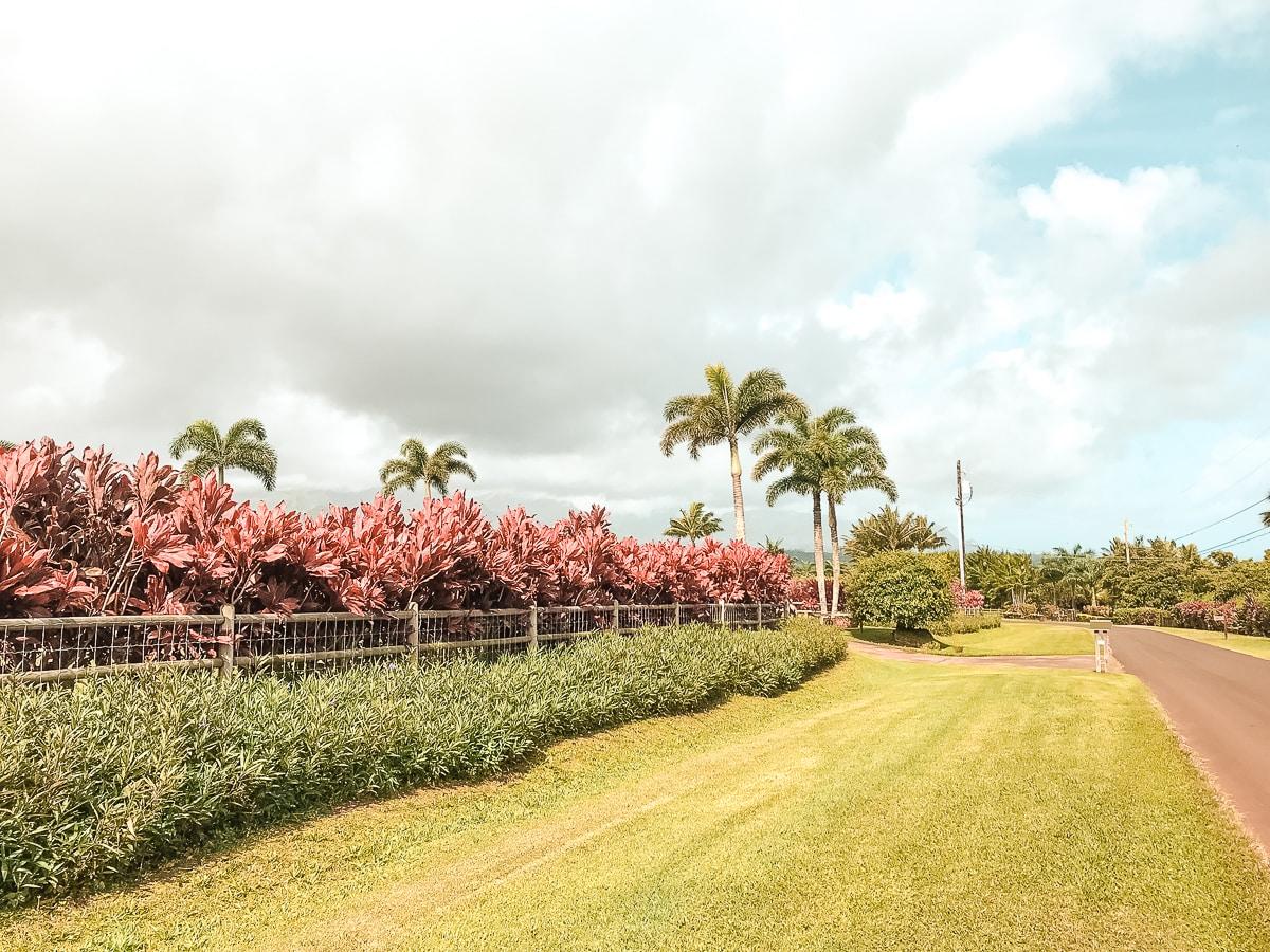 Kauai Landschaft