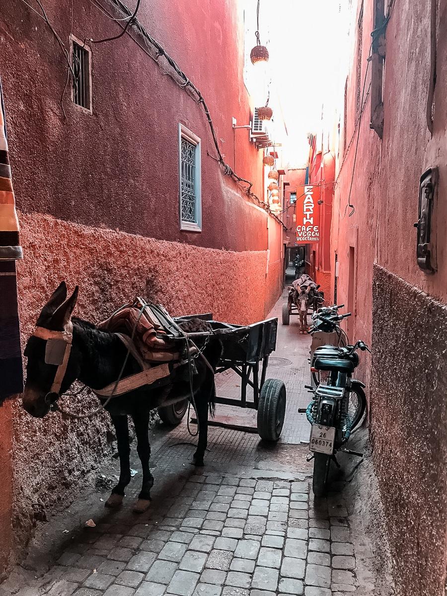 Marrakesch Gassen