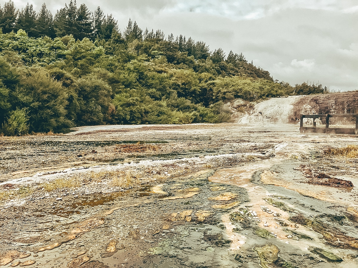Neuseeland Reiseberichte