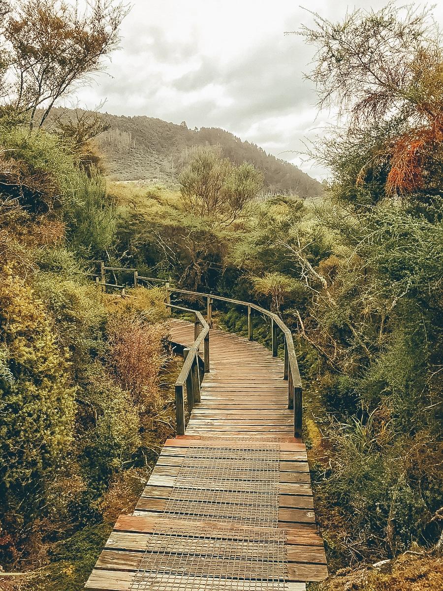 Taupo - Sehenswürdigkeiten, Tipps & Aktivitäten