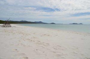 Weiß, weißer, Whitehaven Beach - So war es auf den Whitsundays