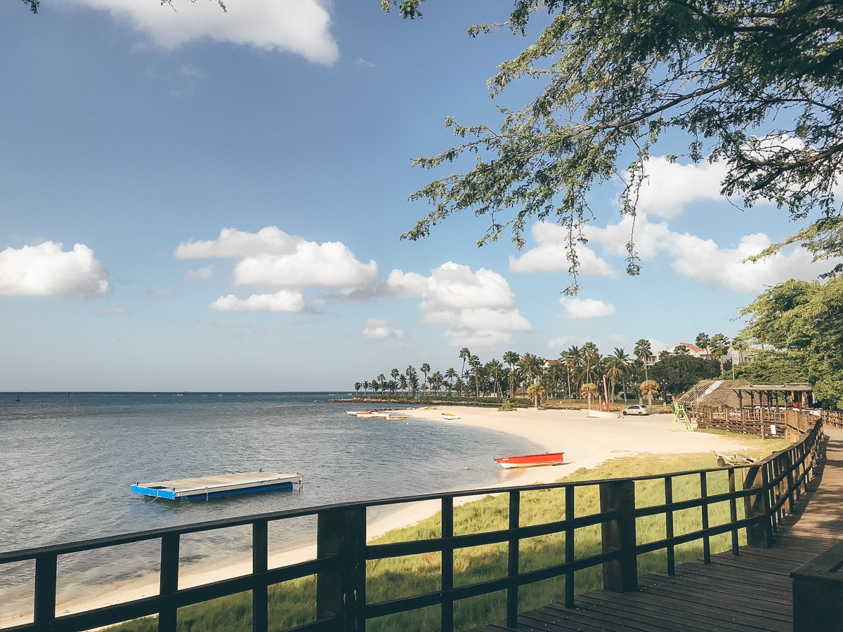 Aruba: die schönsten Strände, Tipps und meine Highlights