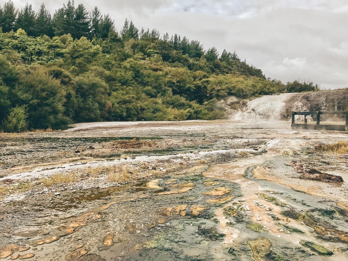 Orakei Korako – Geothermalpark bei Taupo